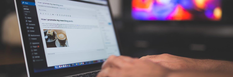 wordpress website design development